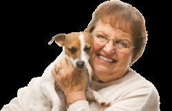 Hundebesuchsdienst